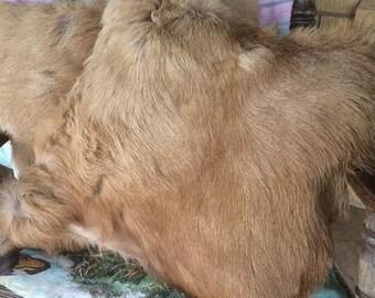 Elk hide pillow