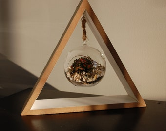 Small Triangle Terrarium