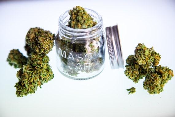Cannabis Art Cannabis Seed 710 OIL Dab Concentrate Real Leaf Weed Marijuana MMJ 420 Kush - Large Format Fine Art Photo Prints Canvas Vinyl