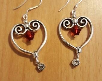 """Earrings """"Heart of money"""""""