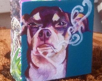 420 Friendly Pet Portraits