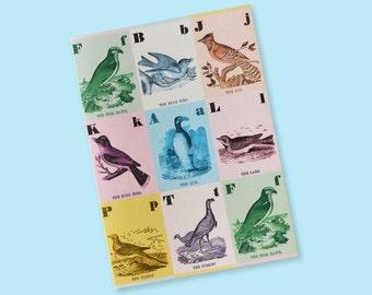 Greeting Card Little Birds // Invitation Card, Birthday Card, All Occasion, Vintage Illustration