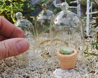 Miniature Dollhouse FAIRY GARDEN ~ Miniature Fairy Garden Glass Cloches, Set of 5
