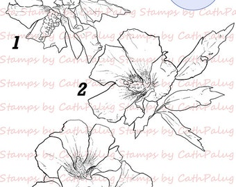 Digital Stamps-Flowers-Hibiscus-Line Art for Cards & Crafts