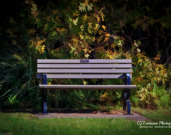 The Empty Bench - original photograph, digital download, painterly photo