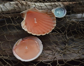 Seashell Tea Light Gel Candle