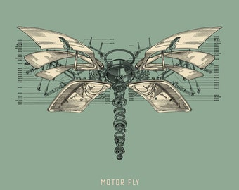 Motor Fly Print