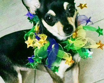 Mardi gras Festive tulle and stars collar Chihuahua ckc spaniel yorkie dog clothes