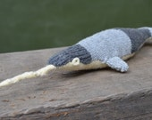 Striped Narwhal