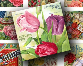 INSTANT DOWNLOAD Digital Images Collage Sheet Vintage Seed Catalogs Beautiful Flowers 2 Inch Squares for Tags Crafts (GSTWO56)