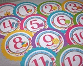BEACH Baby's 1st Year Tags / Beach First Year Tags / Beach 1st Year Tags / Beach Photo Tags / Monthly Photo Tags / Girl Beach Tags / Tags
