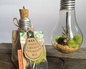 D.I.Y Recycled light bulb moss terrarium kit with red dragon figurine by Nik da Pooh designs, hanging terrarium, eco gift