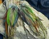 ARTEMIS, feather earrings, cruelty free feathers collected from happy pets