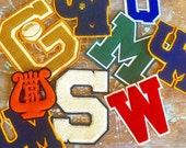 GO TEAM... Vintage School Varsity Letterman Letters Letter Patches Patch High School Letters~ Your Choice of One