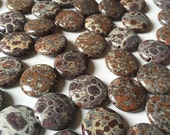 Orbicular Jasper 20mm Round Stones