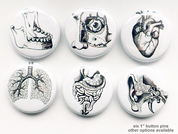 Human Anatomy Gift for him Medical Student PINBACK buttons pins lungs anatomical heart party favor magnets goth halloween stocking stuffer