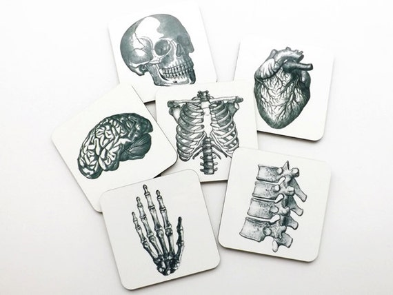 Anatomy Hardboard Coasters graduation doctor physical therapist student hostess gift him her skull anatomical heart medical gothic decor pa