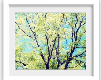 Tree Photograph Wall Art Turquiose Aqua Blue and Green Decor Summer Tree 'Luminous Green'
