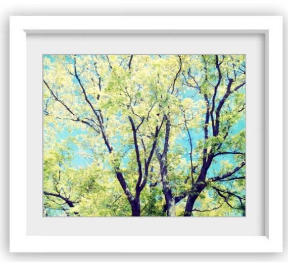 tree photograph wall art turquiose aqua blue and green decor. Black Bedroom Furniture Sets. Home Design Ideas