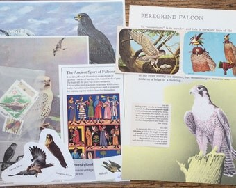 Falcons Birds of Prey Vintage Falconry  Collage, Scrapbook and Planner Kit Number 2117
