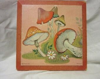 1971 D.A.C. NY Mushroom Plaque
