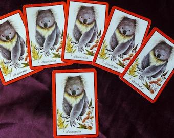 Vintage Koala Bear Australia Playing Cards