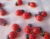 Wooden Ladybugs   Teeny Tiny Ladybugs  20 Ladybugs  Embellishment