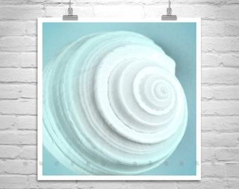 Aqua Wall Art, Bathroom Decor, Seashell Photo, Blue Bath Art, Sea Shell Art, Seashell Picture, Bath Decor, Square Picture, Square Print