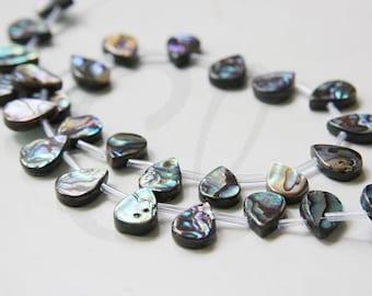 15.5 Inch Full Strand Shell Beads - Teardrop - 14x10mm (188)