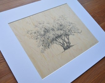Rustic Tree Drawing on Wood - Pen and Ink Art Print of Lover's Oak - 11x14 - Georgia