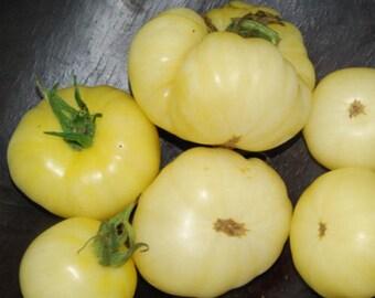 Organic Tomato White Wonder Beefsteak Heirloom Vegetable Seeds