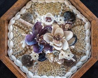 "Sailors Valentine Art Octagon Shadowbox: ""Shipwrecked"" Seashells & Quahog Pearls"