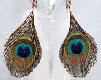 Wire Wrapped Peacock n White Feather Earrings with Niobium Ear Wires, Peacock Feather Earrings, Hippie Earrings, Boho Earrings