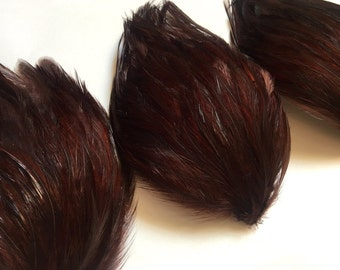 SET OF 5 - Dark Chocolate Brown Hackle Feather Pads