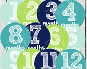 MONTHLY IRON ON Decals or Monthly stickers - 12 Monthly iron on heat transfers - for Baby - Aqua, Green and Blue Monthly Pack (Style#B02)