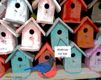 Stellar Jay Art, Backyard Birdhouse, Digital Blue Bird, Bluejay Wall Hanging, Red Houses, Cottage Chic, Home Decor, 8 x 10 Giclee Print