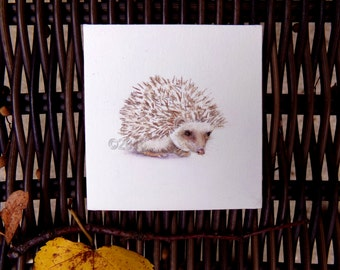 Original Hedgehog painting, home decor