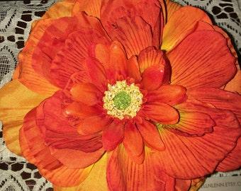 Orange beauty hair flower