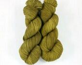 Hand Dyed Yarn, FAVE sock weight yarn, GLEN