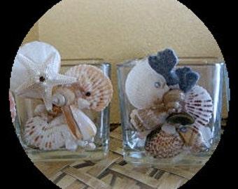 The Tides seashell vase/holder