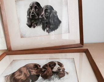 Vintage 1950s Framed Dog Prints Setters Art Irish