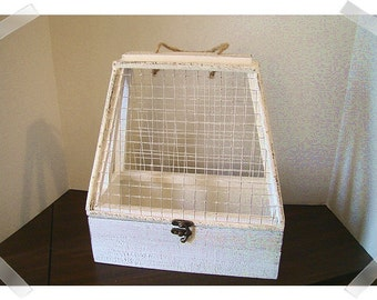 Wooden Terrarium with Wire Mesh/ Tabletop Size/ Garden Decor*