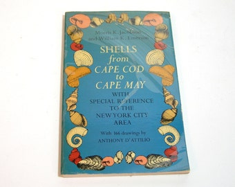 Shells From Cape Cod To Cape May By Anthony D'Attilio, Vintage Dover Book