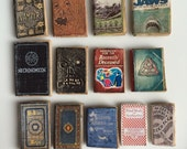 Sunnydale Library Miniature Dollhouse Book Collection