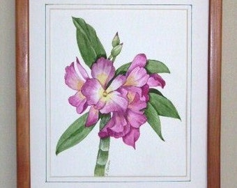 Orchid Miltonia, Lavender, OOAK Watercolor Flower Painting
