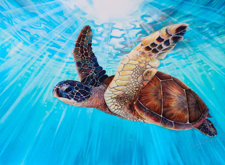 Large Original Hawaiian Sea Turtle Art Watercolor Painting