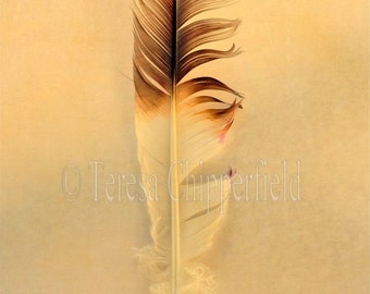 Feather Photography,  Feather Print, Feather Photo Wall Art, Bird Feather Art, Nature Feather Nursery Print,Soft Pastel Home Wall Decor,8x12