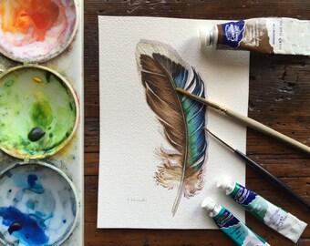 Mallard Feather study - original watercolour