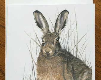 Brown Hare Blank Greeting Card