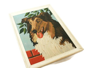Vintage Paint by Number Set / Framed Painting of a Collie / Mid century Retro Art of A Dog